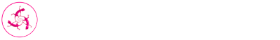 This is the cropped header logo for Pink Lizard Web Design Phoenix, Arizona
